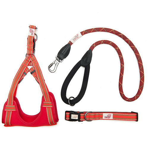 Red Orange padded collar, harness & lead