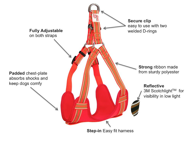 Long Paws Padded Step-in Harness