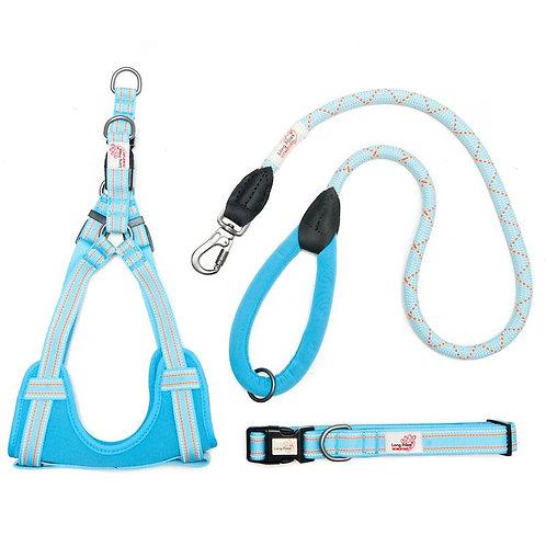 Light Blue Comfort Collar, Harness, Leash