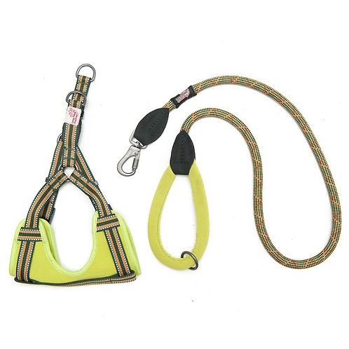 Green padded harness & lead