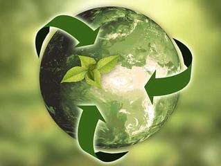 Sustainability Driven Innovation