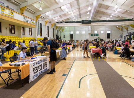 Transition of club fair online causes concern