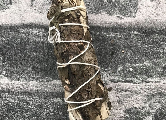 White Sage + Peppermint 10cm