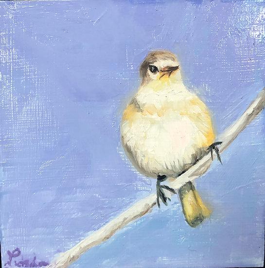 Pear bird