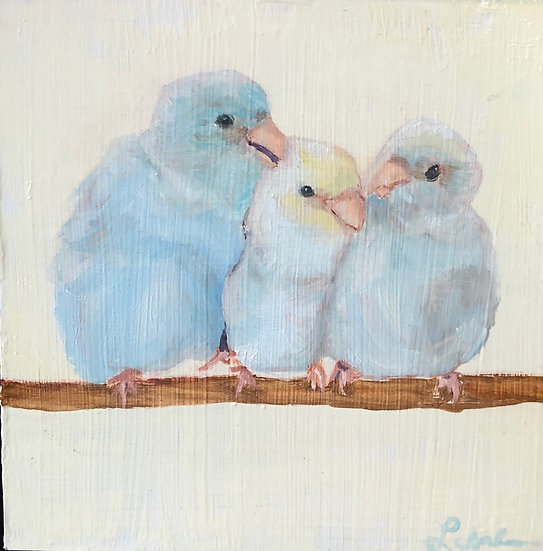 Three Little Birds sat on my window and they told me I don't need to worry