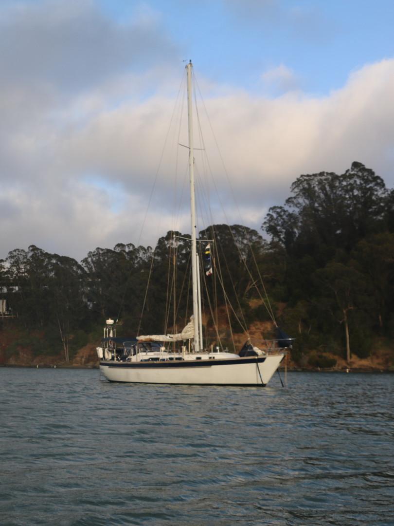 Clipper Anchored
