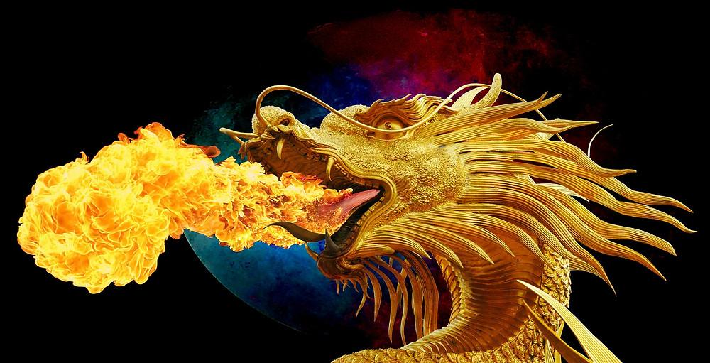 Dragon, ficción, género literario
