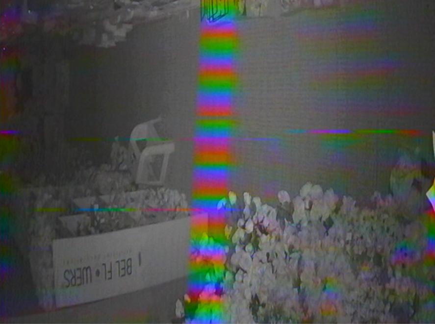 Screenshot 2021-04-15 at 03.08.52.png