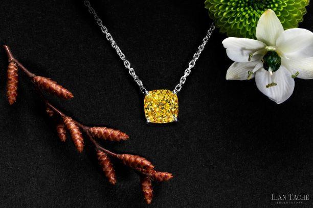 zimmi diamond necklace