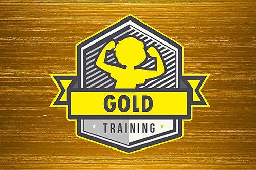Gold Taekwondo Program