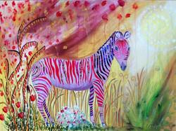 Zebra, 50 x 70