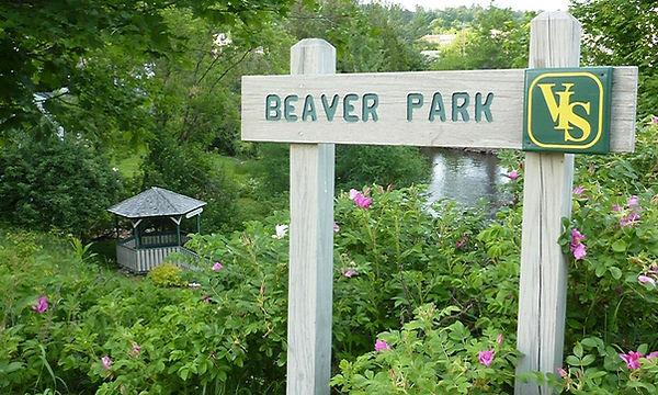 Beaver - 1.jpg