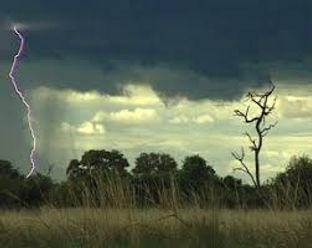 thunderstorm,surv,1.jpg