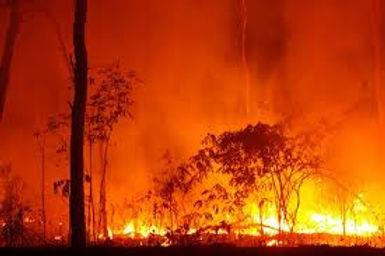 fire,40.jpg
