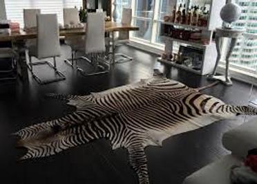 skin,zebra,1.png5.png