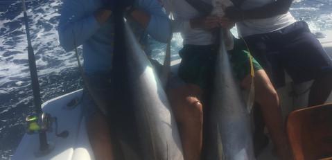 tuna double