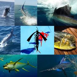 Fish Downsea Header