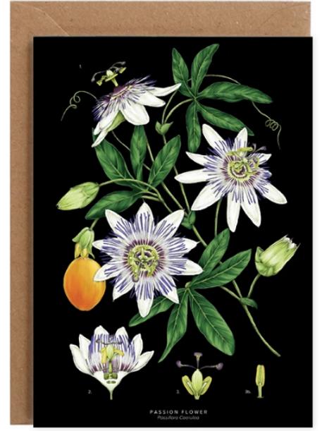 Botanical 'Passion Flower - Black' Card
