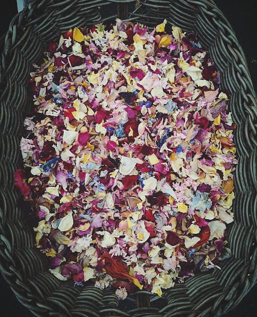 petal confetti.jpg