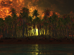 Tropical-Heat