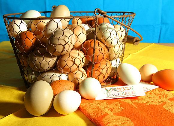 Thumperland Eggs