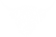 new logo 2020 white.png