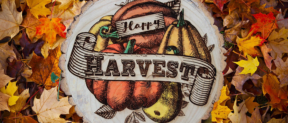 Happy Harvest Log Slice