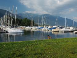 Hafen Ascona Lago Maggiore