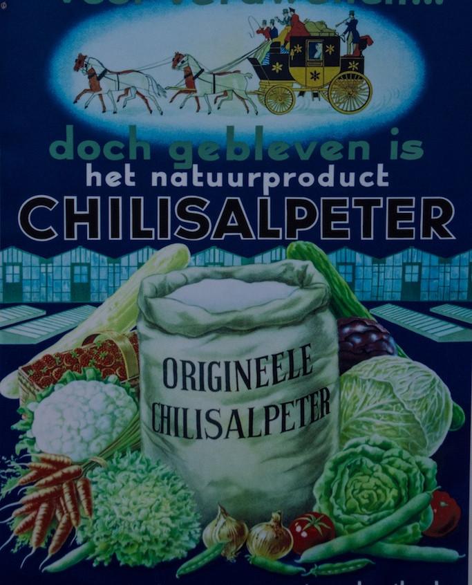 Chili, Humberstone (6)