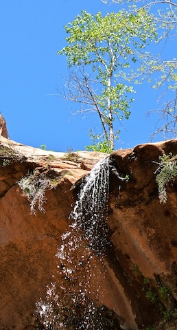 Zion Emerald Pool waterval