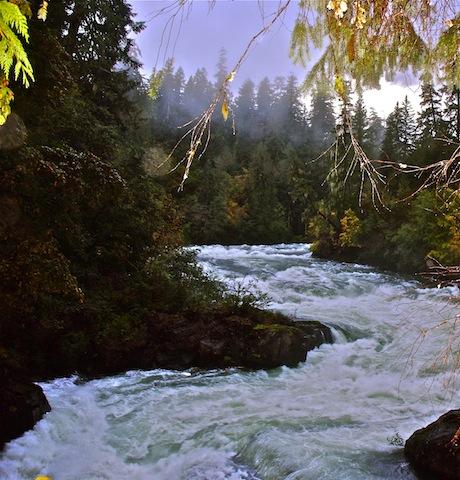 Canada, Stamp River Falls (2)