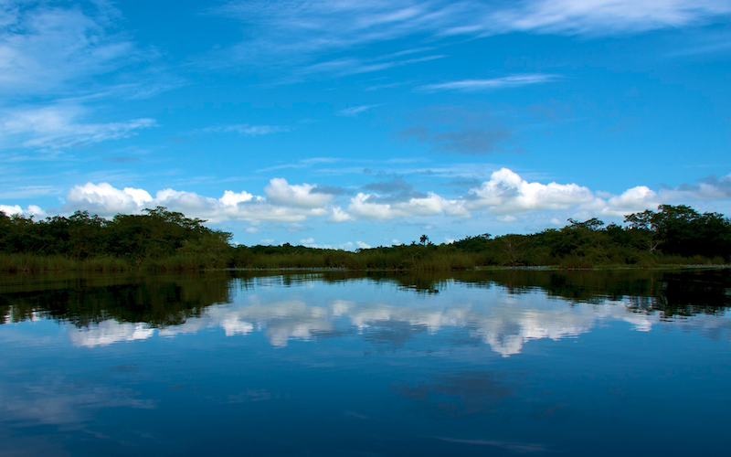 Belize, New River (1)
