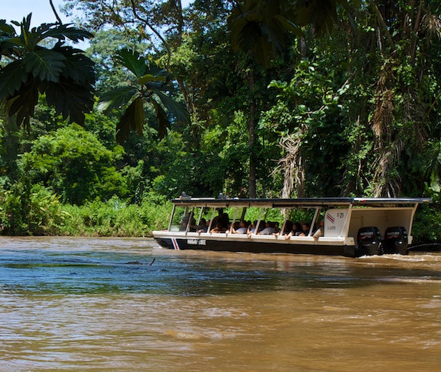 Costa Rica, Tortuguero NP (2)