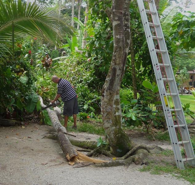 Costa Rica, Cahuita; Camping Maria, the helping man