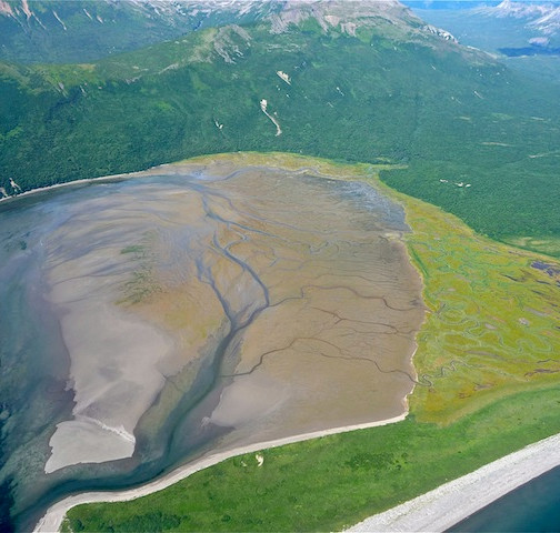 Alaska, from Homer to Katmai NP (5)