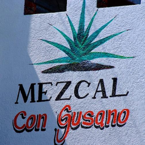 Mexico,fábrica de Mezcal (1)