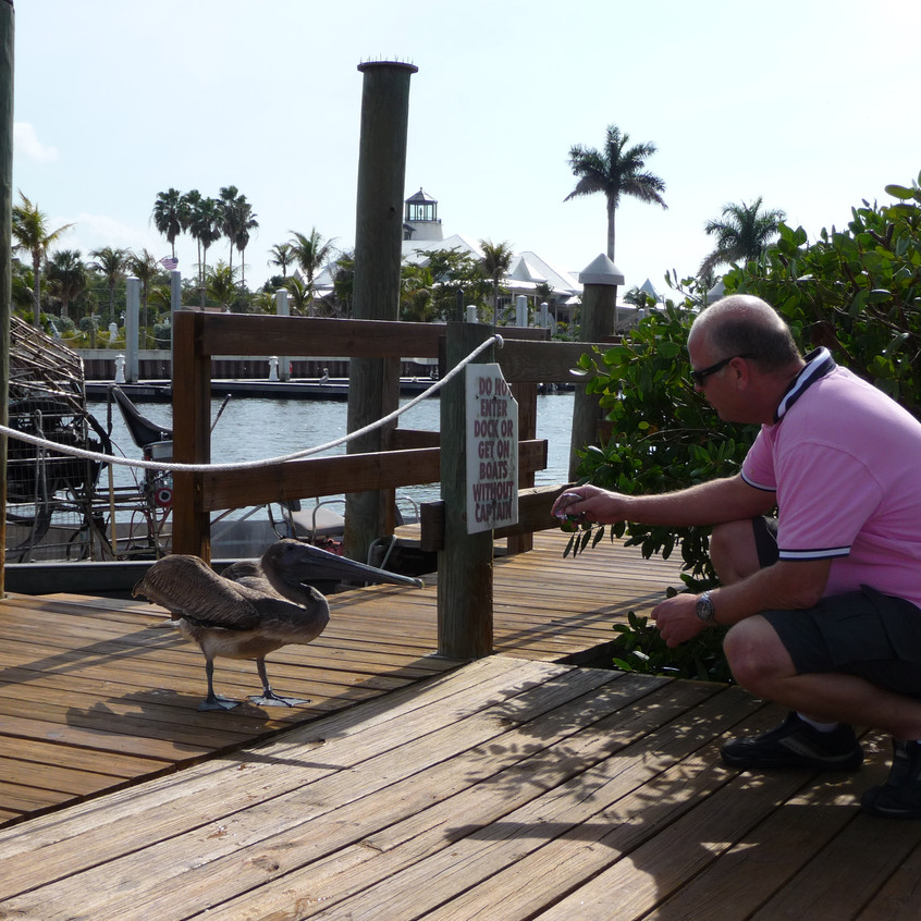 The Keys, JP with pelican