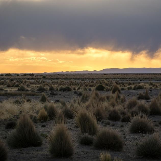 Bolivia, Altiplano (2)