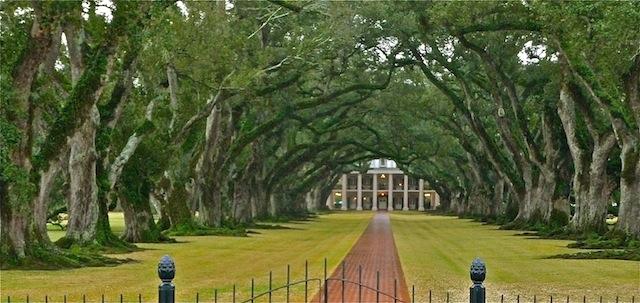 USA, Oak Alley Plantation (3)