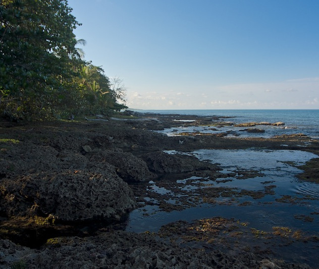 Costa Rica, Cahuita; Camping Maria (2)