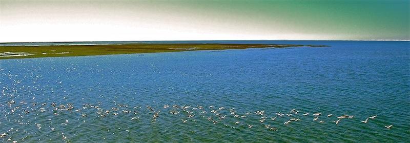 Mexico, Baja California Sur, Oude pier in Guerrero Negro (1)