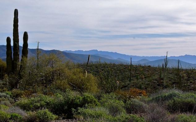 Mexico, Baja California Cataviña (2)
