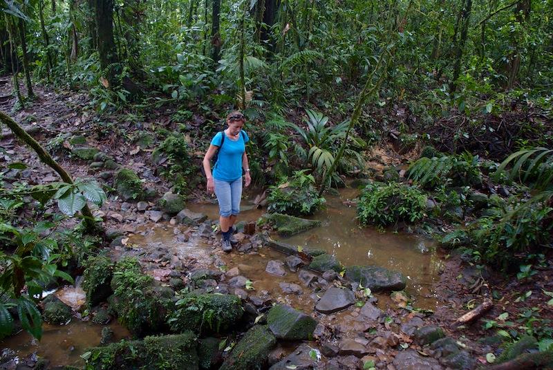 Costa Rica, Tenorio National Park (1)