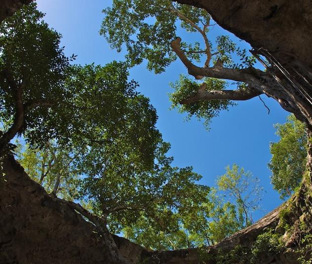 Mexico, Cenote Suytun (4)