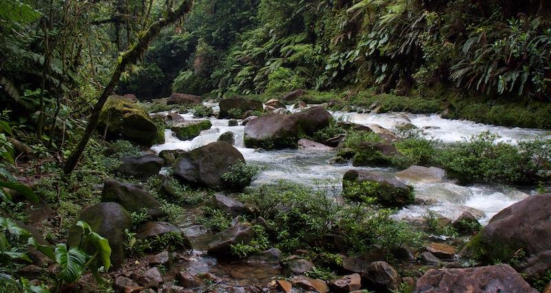 Costa Rica, Tenorio National Park (3)