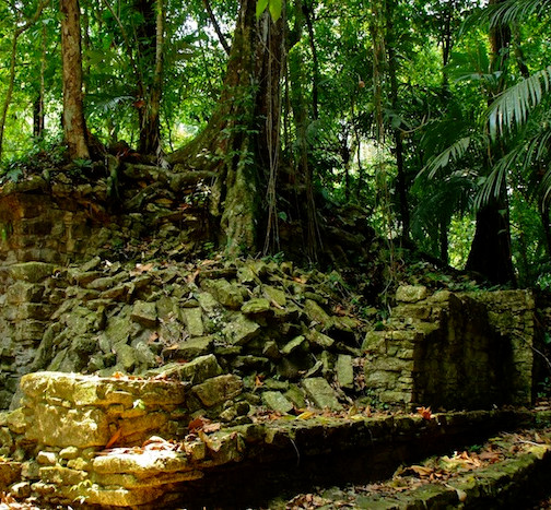 Mexico, Palenque (10)