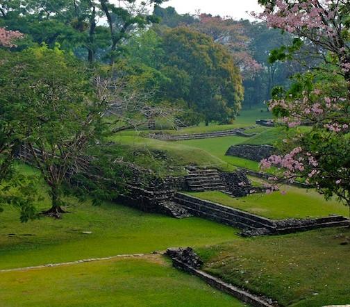 Mexico, Palenque (7)