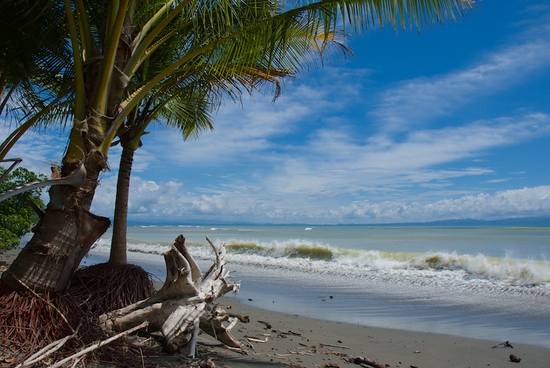 Costa Rica,Puerto Jimenez;on the road to Carate (3)