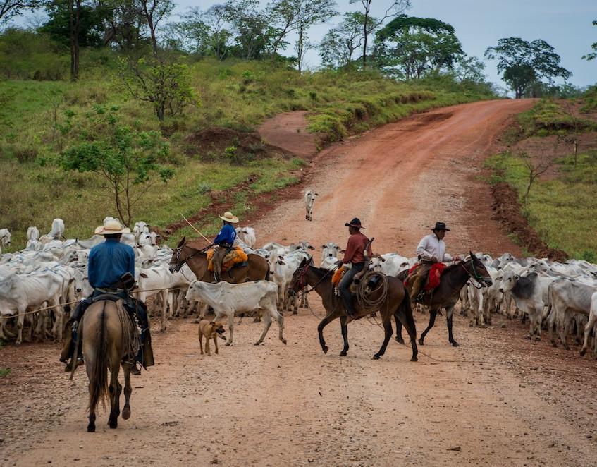 Bolivia, Jesuit Missions de Chiquitos (5)