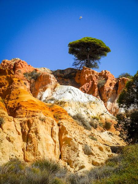 Portugal: Praia Falésia (1)